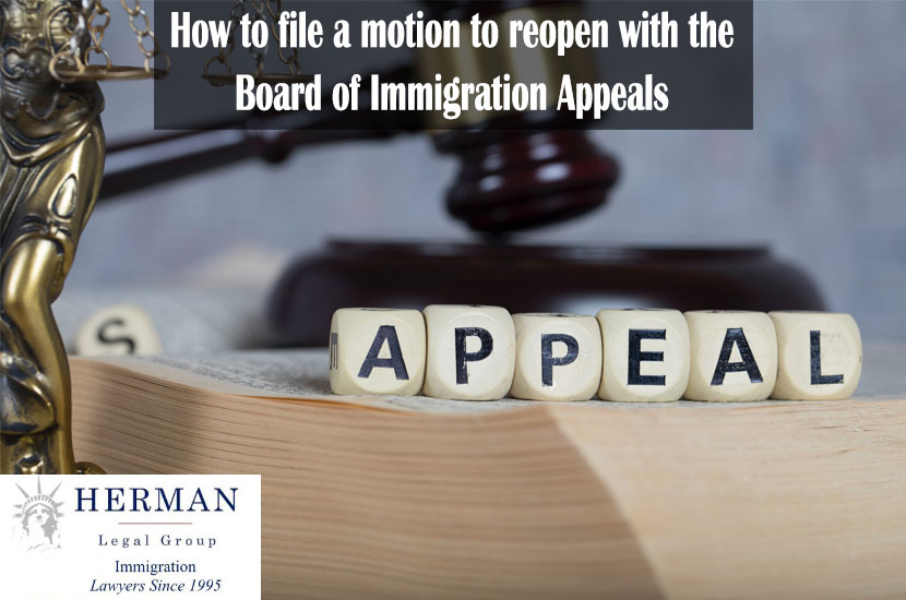Word APPEAL composed of wooden letters. Statue of Themis and judge's gavel in the background