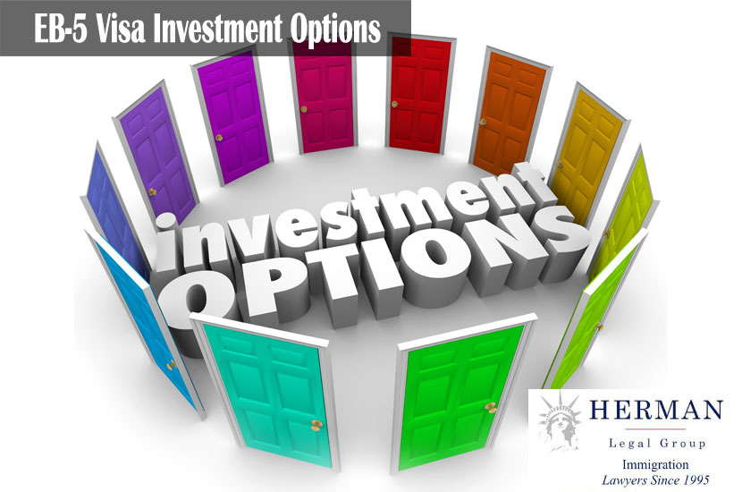 Investment Options 3d words surrounded by doors illustrating many paths or choices